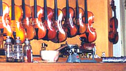Varnished Violins